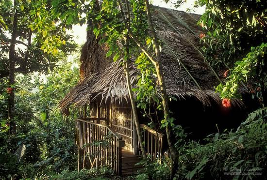 the-village-pohnpei3.jpg