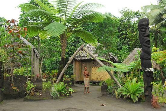 ジュゴンと火山に出会える ヤスール キャンピング グラウンド & ツリーハウス